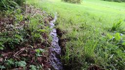 Mini stream in a field UK Footage