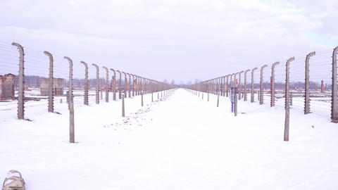 Walk between barbed wire fences of destroyed concentration camp in winter Footage