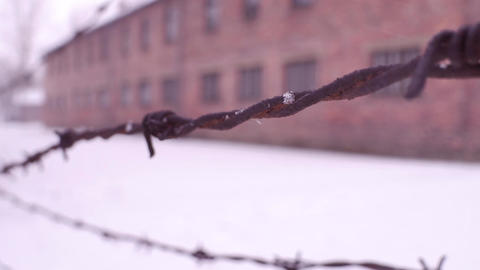 Rusty barbed wire fence in former concentration camp Footage