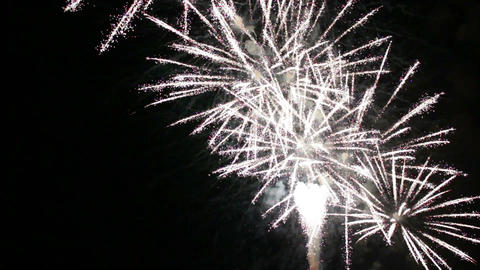Fireworks in the night sky Archivo