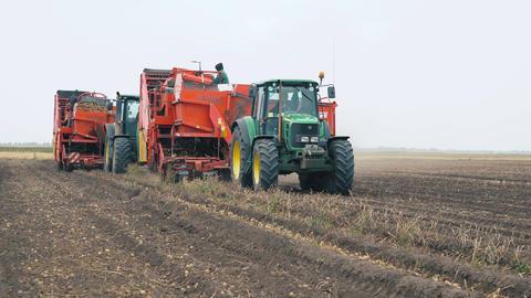 Combine harvester harvest potato Footage