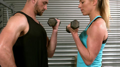 Fit people lifting dumbbells face to face Live Action
