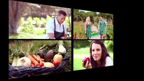 Collage of organic food Animation