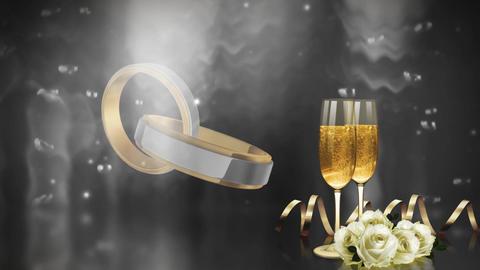 Wedding Celebration Stock Video Footage