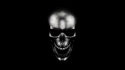 Human Skull On Black Background 3D Rendering Photo