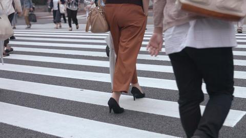 People walking on the crosswalk (Slow Motion Video) Ginza & Yurakucho in Summer 영상물