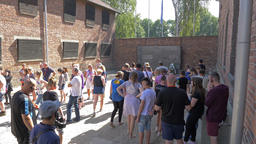 Visitors in Auschwitz concentration camp next to death wall Live Action