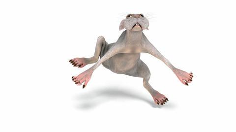 Digital Animation of a dancing Animal Animation