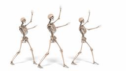 Digital Animation of cheerleading Skeletons Animation