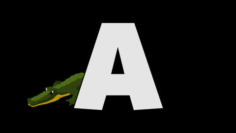 Letter A and Alligator (foreground) Animation