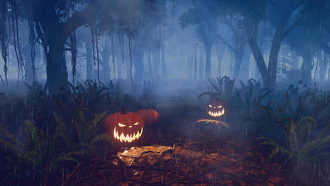 Halloween pumpkins on scary night forest path Animation