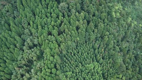 DJI MAVIC 4K Aerial Drone Video Taiwan Hsinchu Goose bun mountain 20170924 9 Footage
