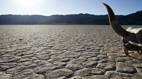 Death valley skull timelapse Footage