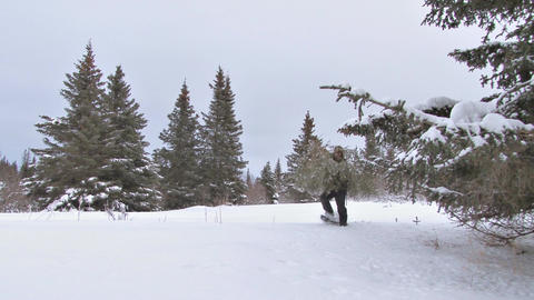 Man in snowshoes carries christmas tree from the woods Archivo