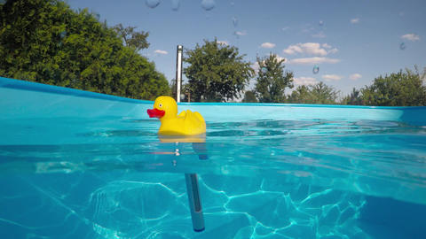 Measure the water temperature in the pool Archivo