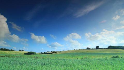 Rolling grass hills in copenhagen denmark Footage