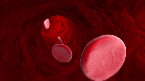 Blood cell (veins, arteries, capillaries). 3D animation Animación