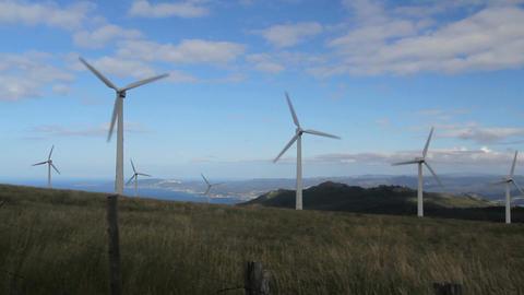 Windmill farm Footage
