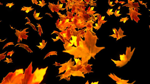 HD Loopable Background with nice falling leaves Animation