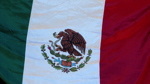 Mexican Flag Stock Video Footage
