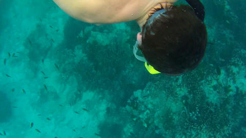Snorkeling 1 Stock Video Footage
