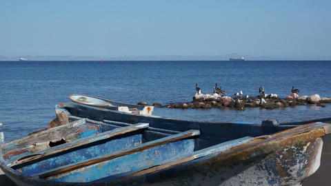 Old Wooden Boats on the Ocean Shoreline Stock Video Footage