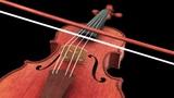 Violin Animation