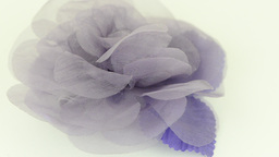 Purple fabric flower Footage