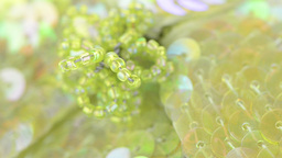Green fabric flower closeup Stock Video Footage