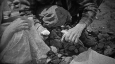 1935: Man cutting heads off sih putting into cast iron frying pan Footage