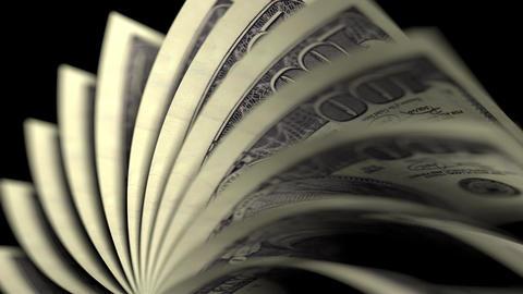 Flipping hundred dollar bills. Seamless loop Footage