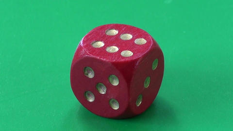 success concept. ladybug ladybird on red game dice Stock Video Footage