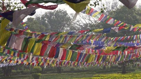 Buddhist flags in Lord Buddha birthplace in Lumbini, Nepal Footage