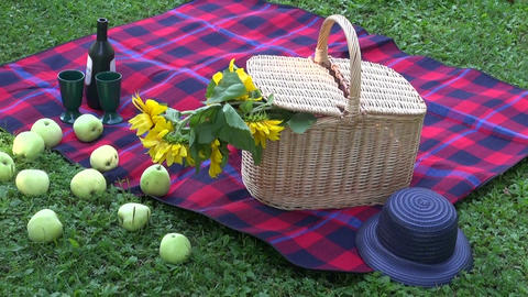 Picnic Basket on park grass on sunny day Footage