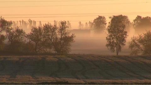 sunrise and summer end farmland fields Footage