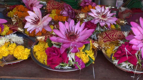 hindu ritual religion lotus and other flowers, Mumbai Footage
