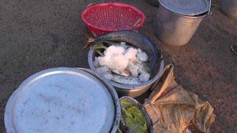 fresh fish in South India fish market 영상물