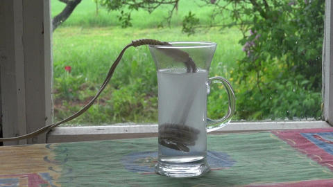boiling water with vintage heating coil tool Footage