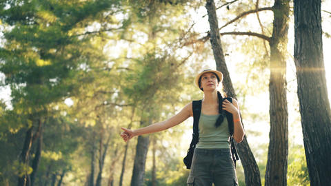 Traveler woman hitchhiking on a sunny forest road. Tourist girl looking for ride Footage