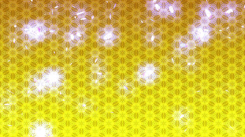 Japanese petal light Japanese style Japanese pattern CG動画