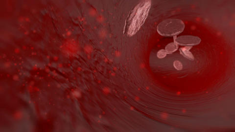 3D blood cells traveling through a vein. Red blood cells flowing in artery Animation