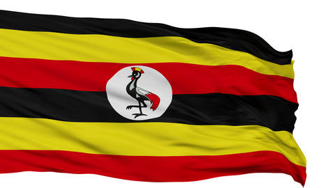 Isolated Waving National Flag of Uganda Animation