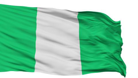 Isolated Waving National Flag of Nigeria Animation