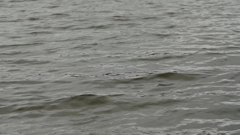 Water ripples surface Footage