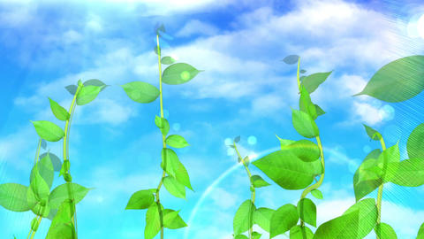 Growing plant image, sky background CG動画素材