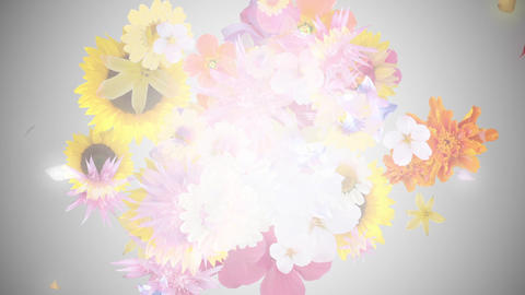 Bouquet image, gray background 2 CG動画
