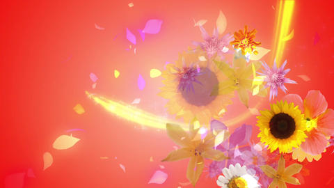 Flowers blooming on the color line 2, vermilion background CG動画