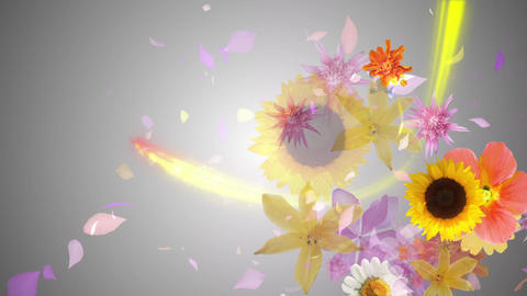 Flowers blooming on the color line 2, gray background CG動画