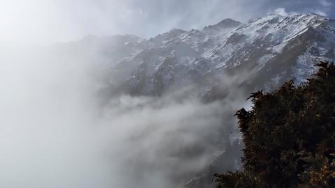 Mist stock footage