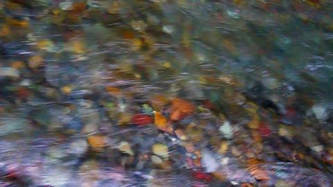 Flowing Stream Background Footage